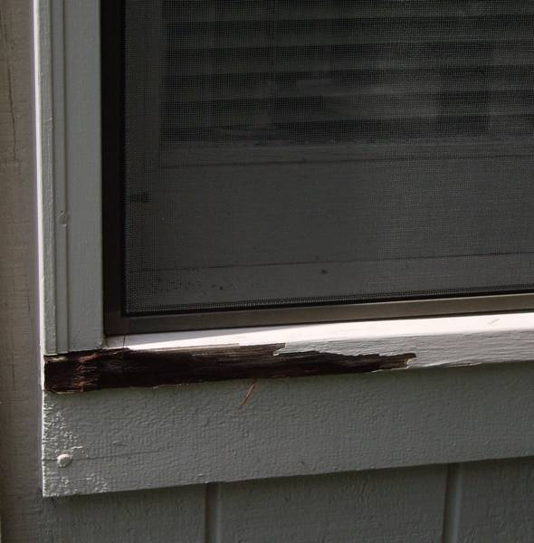 Rotted window double hung sill